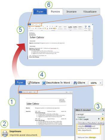 Word Web App dintr-o privire