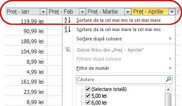 Filtre automate care apar în anteturile de coloană dintr-un tabel Excel