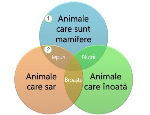 crearea diagramelor in word