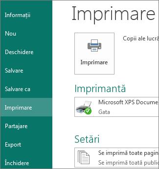 Captură de ecran cu opțiunile Imprimare din Publisher.