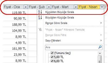 Excel tablo sütun başlıklarında görünen Otomatik Filtreler